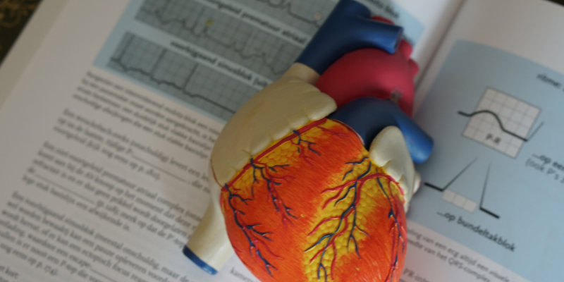 Cardiologists: cardiology consultation
